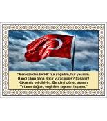 Türk Bayrağı Halı Portresi 50 x 70 cm. No:3